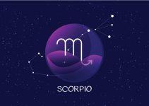 signos que combinam com escorpião