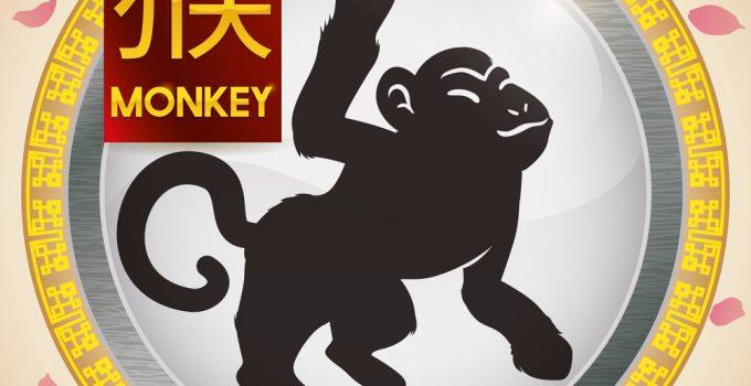 signo de macaco