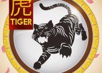 signo de tigre
